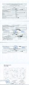 Бумажная выписка из ЕГРН на квартиру